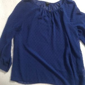 J. Crew Blue Sheer Long-sleeve Blouse Size S